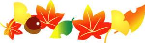 秋yjimage